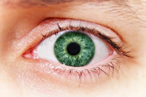 Changer la couleur des yeux avec gimp 1point2vue - Yeux couleur noisette ...