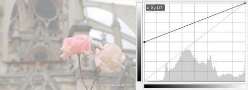 le principe des courbes avec gimp 1point2vue. Black Bedroom Furniture Sets. Home Design Ideas