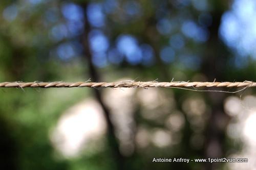 Une corde flou