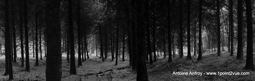 bruit-noir-et-blanc